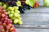 Grapes of different varieties — Stock Photo