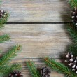 Xmas frame with pine branch and cones on wooden boards — Stock Photo #55033863