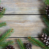 Xmas frame with pine branch and cones on wooden boards — Stock Photo