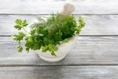 Parsley and dill in a marble mortar — Photo