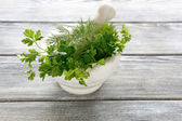 Parsley and dill in a marble mortar — Foto de Stock