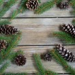 Christmas frame with pine branch and cones on wooden boards — Stock Photo #56477961