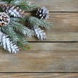 Decorative christmas fir branch covered with artificial snow — Stock Photo #56479617