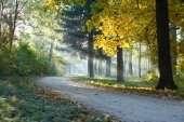 Autumn Landscape the sunbeams — Stock Photo