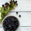 Forest blackberries in a bowl on wooden boards — Stockfoto #58657421