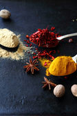 Mix of spices on dark background — Stock Photo