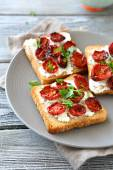 Toasts with cheese and tomatoes — Stock Photo
