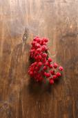 Mountain ash decorative on the table — Stockfoto