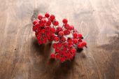 Red rowanberry on the table — Stock Photo