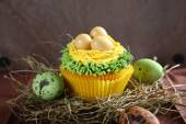 small easter cupcake with eggs — Stockfoto