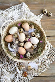 Easter eggs and feathers in the basket — Stockfoto