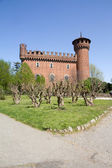 Castle of the medieval town, Turin, Italy — Stok fotoğraf
