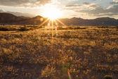 Sossusvlei park, Namibia — Fotografia Stock