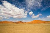 Desierto de Sossusvlei, Namibia — Foto de Stock