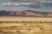 Namibian landscape — Stock Photo