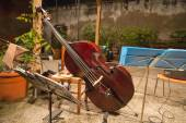 Cello — Stock Photo