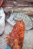 Mercato del pesce — Foto Stock