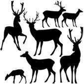 Deer silhouette set — Stock Vector
