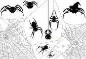 Halloween Spider Set — Stock Vector