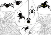 Halloween Spider Set — Vector de stock