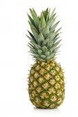 Whole pineapple fruit on white background — Stock Photo