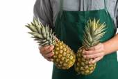 Farmer holding whole fresh pineapple fruit — Stock Photo