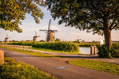 Historians Dutch windmills near Rotterdam — Foto Stock