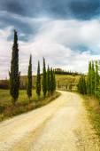 Typical landscape of Tuscany — Stock Photo