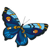 Blue butterfly with open wings in a top vie — Stock Vector