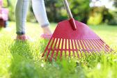 Lawn care — Stock Photo