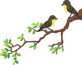 Two song birds on spring branch — Stock Vector