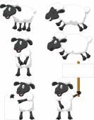 Cute cartoon sheep collection set — Vector de stock