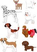 Cartoon dog collection — Stock Vector