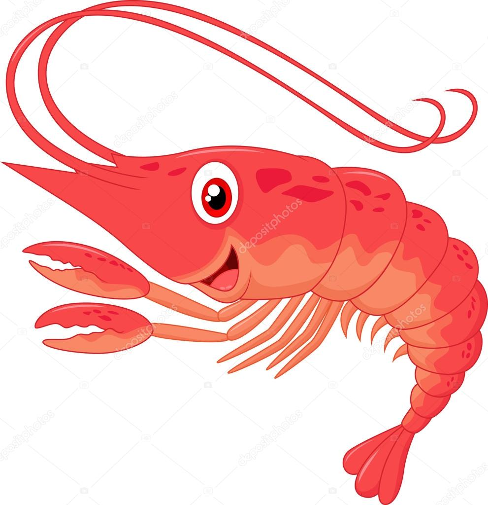Cute shrimp cartoon — Stock Vector © tigatelu #53635789