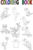 Cartoon bird coloring book — Stock Vector