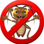 Stop cockroach cartoon — Stock Vector #63518047