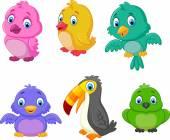 Insieme di uccelli raccolta dei cartoni animati — Vettoriale Stock