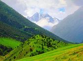 Ala-Archa nature park, Tien Shan range, Kyrgyzstan — Stock Photo
