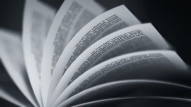 Book's pages turning — Stock Video