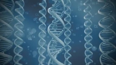 Rotating DNA strands — Stock Video