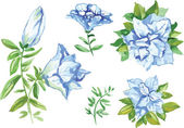 Watercolor flowers in different styles — ストックベクタ
