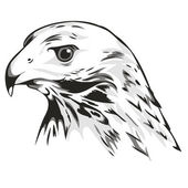 Logo depicting the head of an eagle — Stock Vector