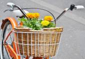 Basket full of flowers on a bicycle — Stock Photo