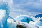 Glacier Lagoon in east Iceland — Stock Photo
