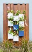 Vertical garden — Stock Photo