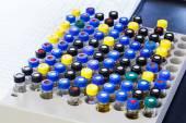 Vials in rack — Stock Photo