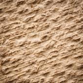 Coconut fiber mat back — Foto Stock