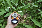 Compass in hand, against the background of blooming lilies. — Stock fotografie