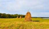 Haystacks. — Stock Photo