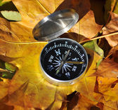 Compass among the autumn leaves.  — Stock Photo